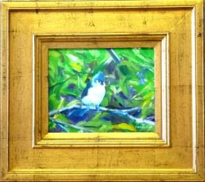 "# 1170 ""LITTLE BLUE TUFTED TITMOUSE"""