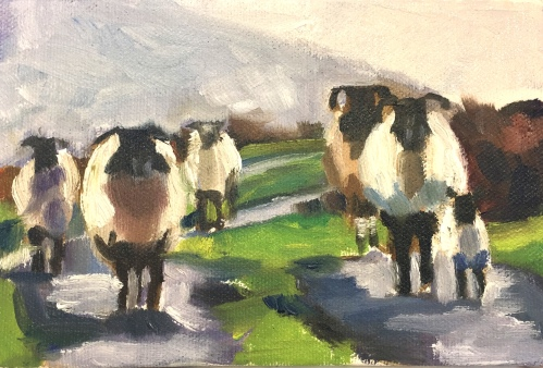 "#1282 ""MAGGIE'S WESTMEATH SHEEP"" I (Class demo)"